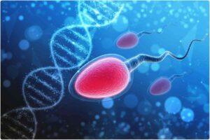درمان خانگی اسپرم صفر